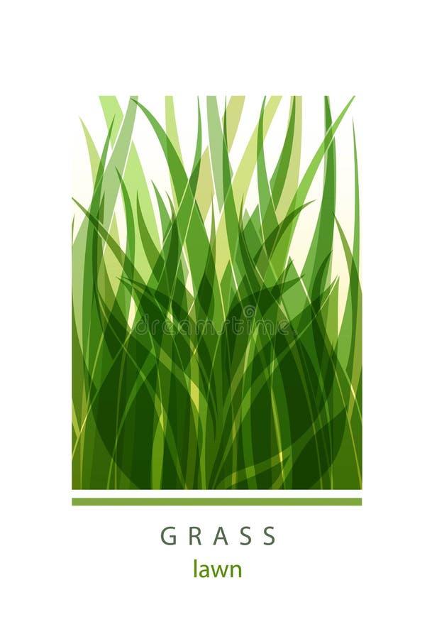Trawy etykietki abstrakcjonistyczny projekt zielona ikony Piękny loga ogród C ilustracji