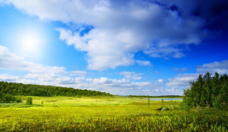 trawy góry północ zdjęcia stock