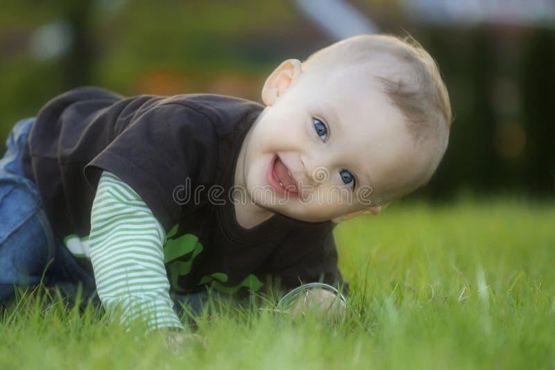 trawy niemowlaka target417_0_ siedzi obraz royalty free