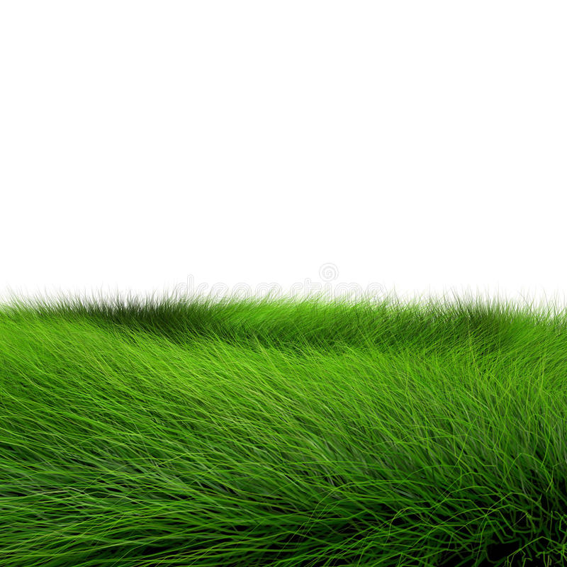 trawy piękna zieleń royalty ilustracja