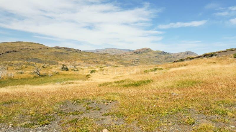 Trawy pole i góra przy Torres Del Paine parkiem narodowym, fotografia royalty free