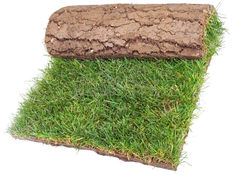 trawy rolki dywanik zdjęcie stock