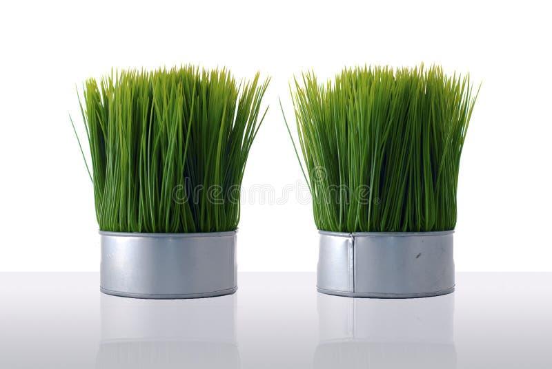 trawy sztuczna zieleń fotografia stock