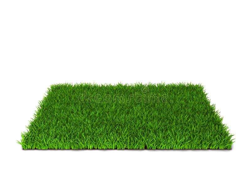 trawy zieleni gazon ilustracja wektor