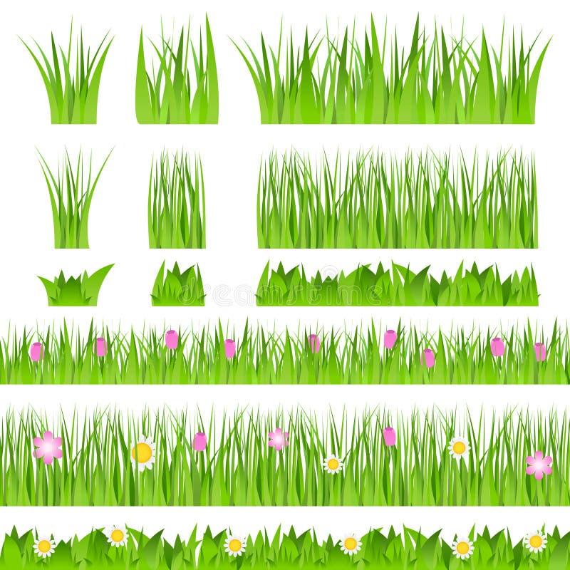 trawy zieleni wektor ilustracja wektor