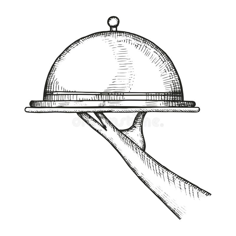 Tray-meal sketch. vector illustration royalty free illustration