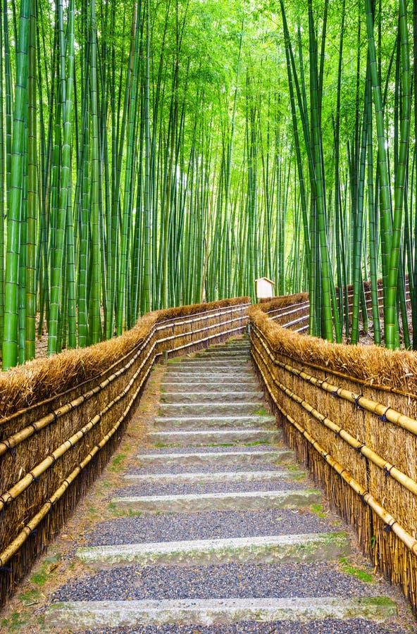 Trayectoria al bosque de bambú, Arashiyama, Kyoto, Japón fotografía de archivo libre de regalías