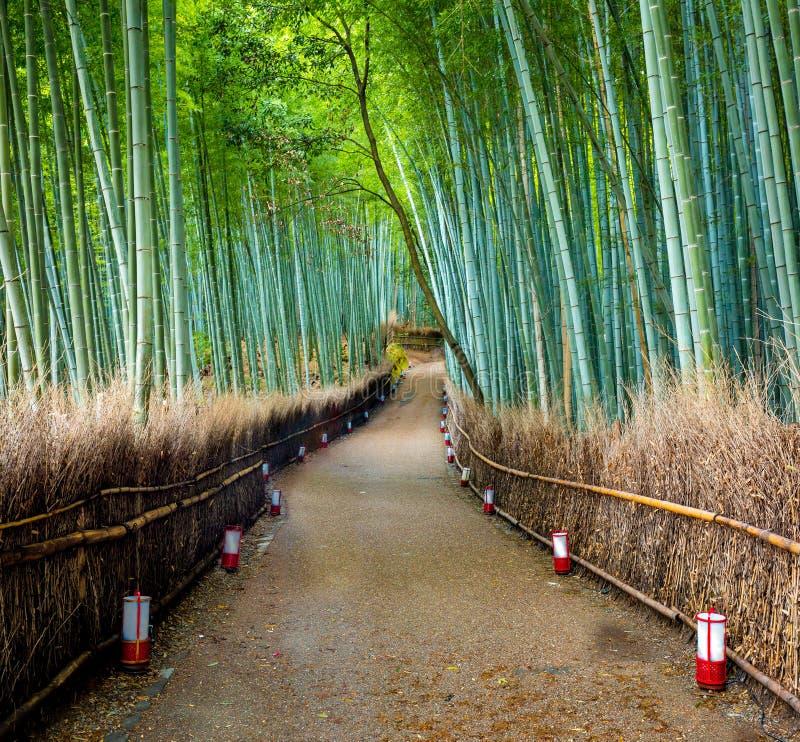 Trayectoria al bosque de bambú, Arashiyama, Kyoto, Japón imagen de archivo