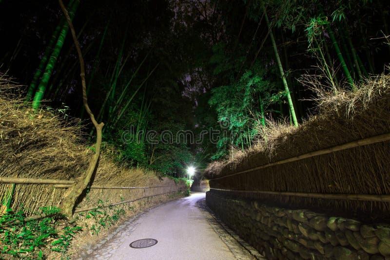 Trayectoria de bosque de bambú en la noche en Kyoto fotografía de archivo libre de regalías