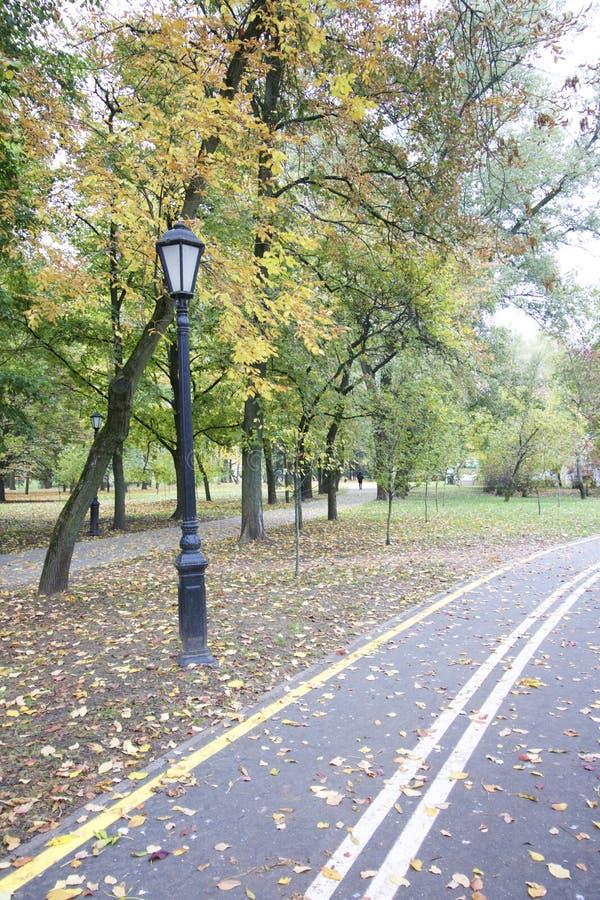 Trayectoria de la bici que lleva a través del parque del otoño imagen de archivo libre de regalías