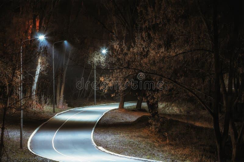 Trayectoria de la bicicleta en el parque de la noche imagen de archivo