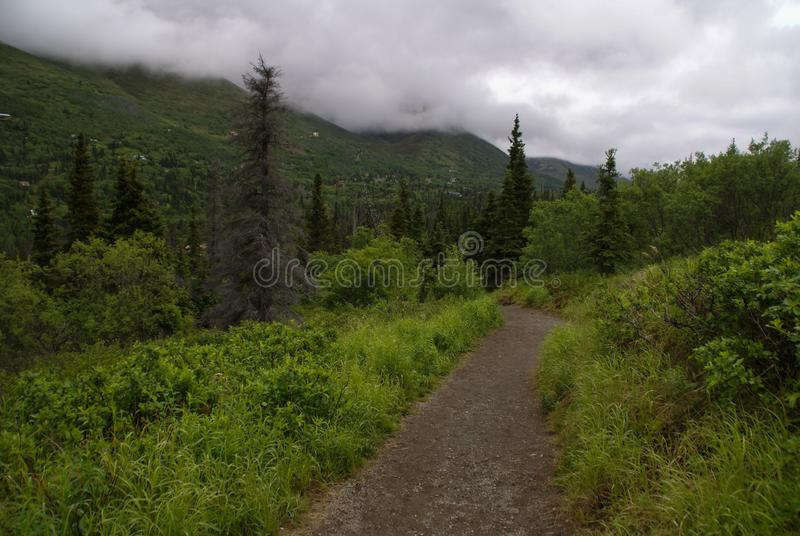 Trayectoria de la grava alineada por el follaje verde rico a lo largo de South Fork Eagle River Trailhead cerca de Anchorage Alas imagen de archivo