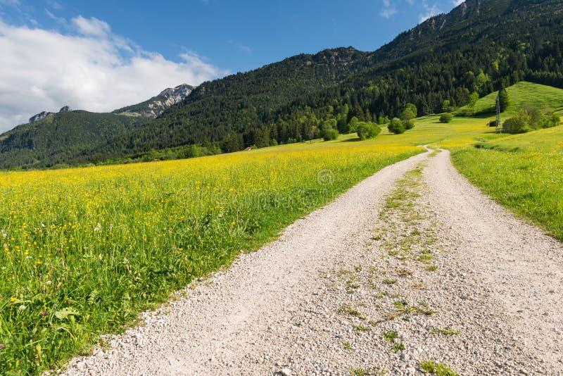 Trayectoria de la grava en paisaje del verano con la montaña imágenes de archivo libres de regalías