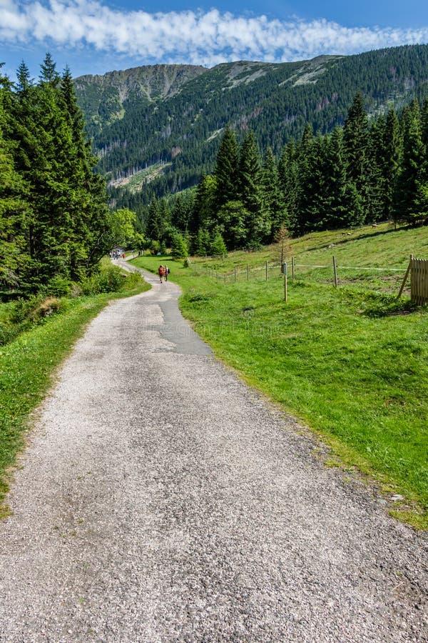 Trayectoria de la montaña en el parque nacional Krkonose fotos de archivo libres de regalías