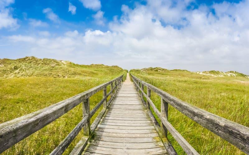 Trayectoria de madera idílica en paisaje europeo de la playa de la duna del mar del nort imágenes de archivo libres de regalías