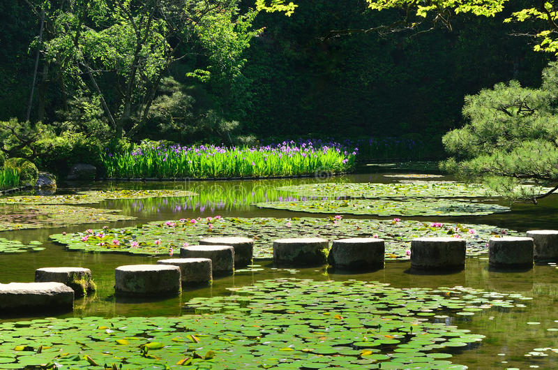 Trayectoria de piedra en la charca del jardín japonés, Kyoto Japón fotografía de archivo libre de regalías