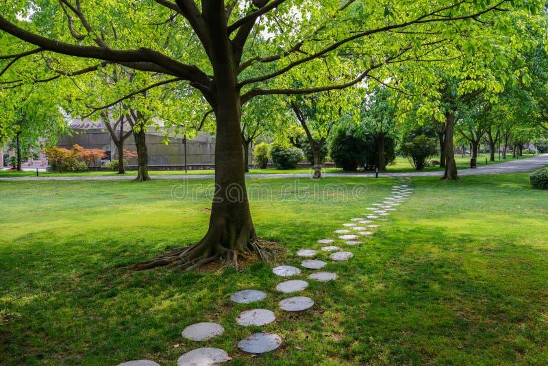 Trayectoria de piedra redonda en la sombra del árbol imágenes de archivo libres de regalías
