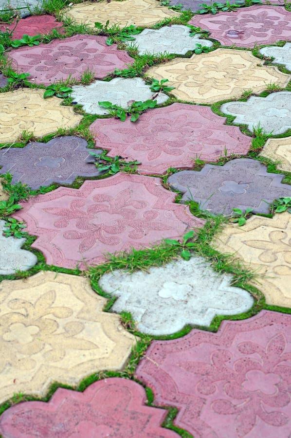Trayectoria de tejas coloreadas de la hierba creciente en los huecos como detrás imagen de archivo