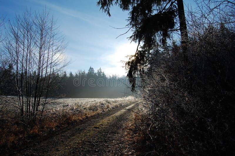 Trayectoria del invierno imagen de archivo
