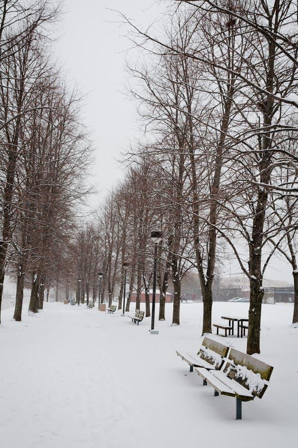 Trayectoria del invierno en el parque imagen de archivo