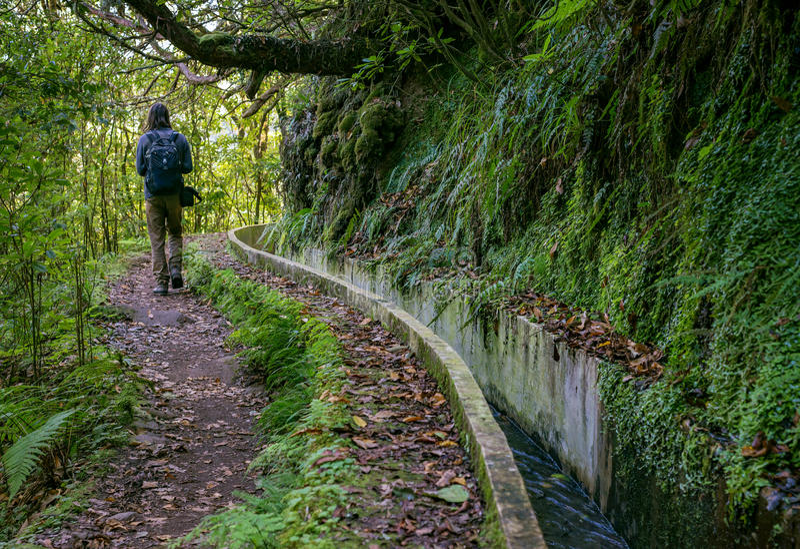 Trayectoria del paseo de Madeira Levada escénica foto de archivo libre de regalías
