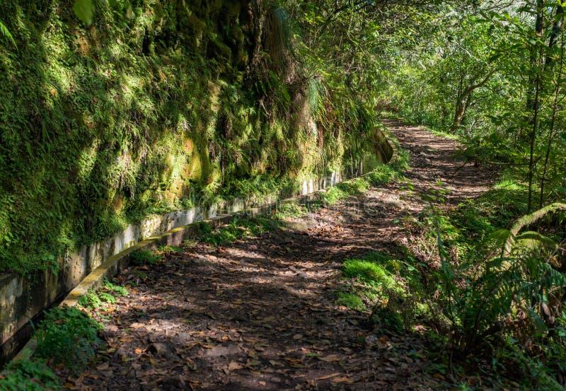 Trayectoria del paseo de Madeira Levada escénica fotos de archivo