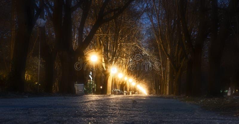 Trayectoria en la noche en un parque imágenes de archivo libres de regalías
