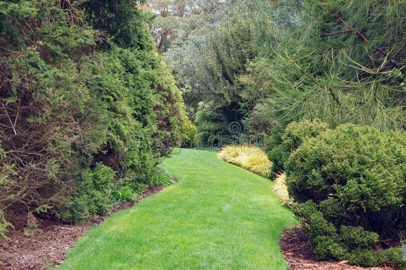 Trayectoria fresca en el jardín, parque del pie de la hierba verde Paisaje natural, fondo imagen de archivo libre de regalías