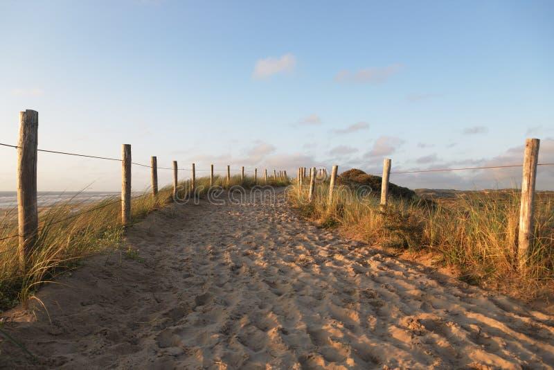 Trayectoria a la playa de la arena fotos de archivo libres de regalías
