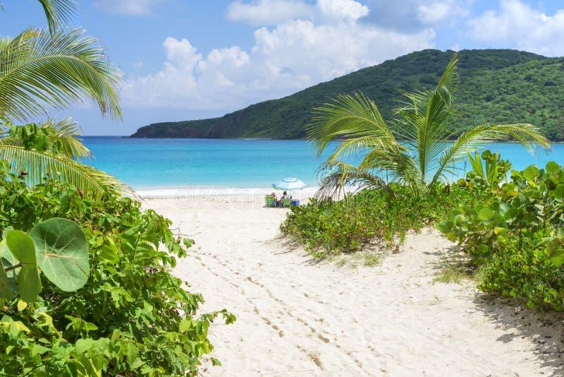 Trayectoria a la playa del Caribe idílica fotografía de archivo libre de regalías