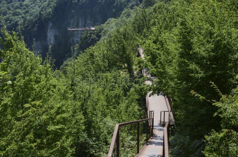 Trayectoria a puente colgante, barranco de Okatse, Georgia imagen de archivo libre de regalías