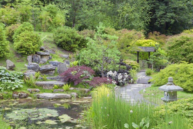 Trayectoria que camina a través del jardín oriental con la charca, rocas, linterna fotografía de archivo libre de regalías