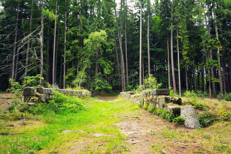 Trayectoria sobre el puente de piedra en el bosque, concepto de la aventura del viaje de la exploración fotografía de archivo