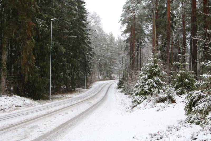 Trayectoria sueca del camino de la escena del invierno foto de archivo