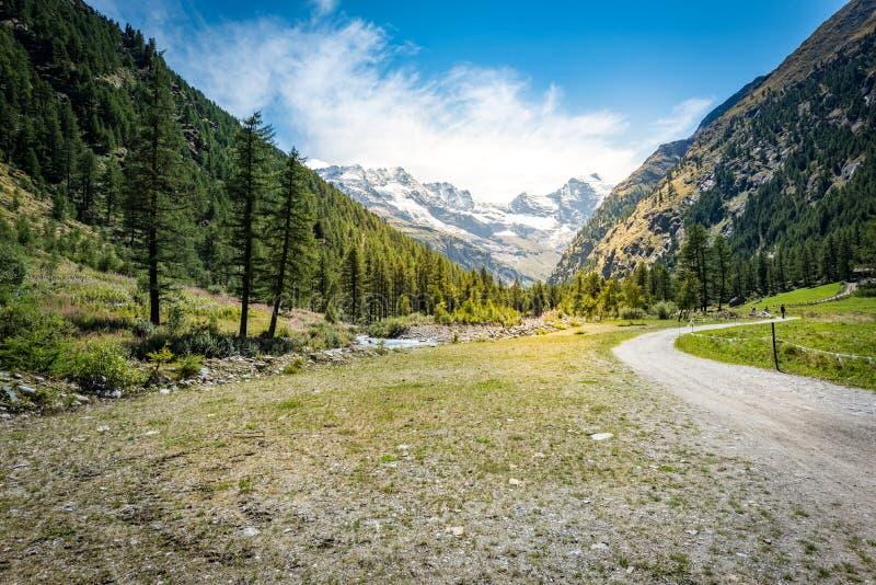 Trayectoria y árboles de la montaña en el tiempo de la puesta del sol imagen de archivo libre de regalías