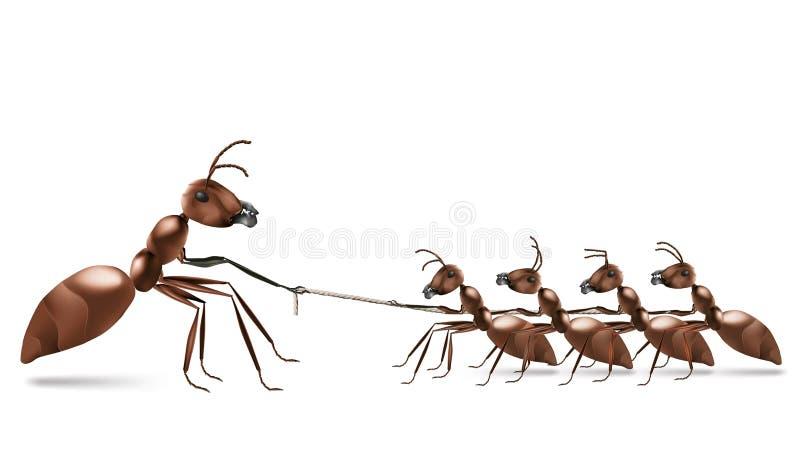 Trazione della corda della formica illustrazione di stock