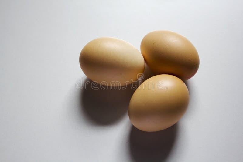 Tre ägg förläggas på en vit bakgrund royaltyfri fotografi