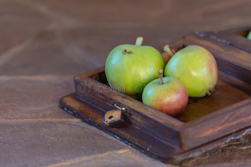 Tre äpplen i en träask fotografering för bildbyråer