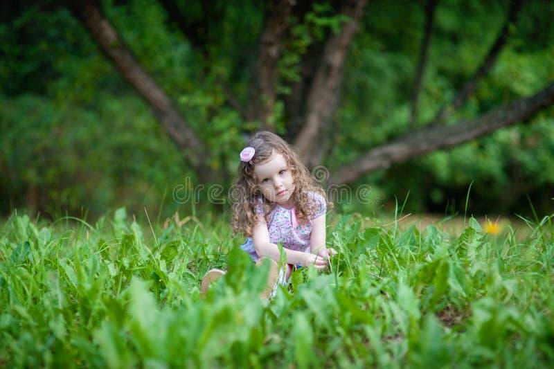 Tre-år-gammalt lockigt flickasammanträde på grönt gräs i sommar parkerar arkivbilder