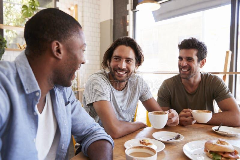 Tre amici maschii che si incontrano per il pranzo in caffetteria immagine stock libera da diritti
