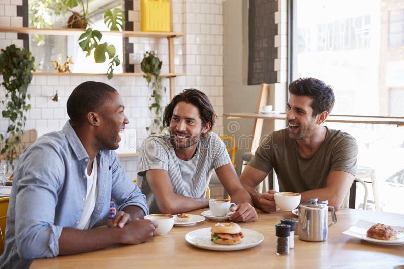 Tre amici maschii che si incontrano per il pranzo in caffetteria fotografie stock