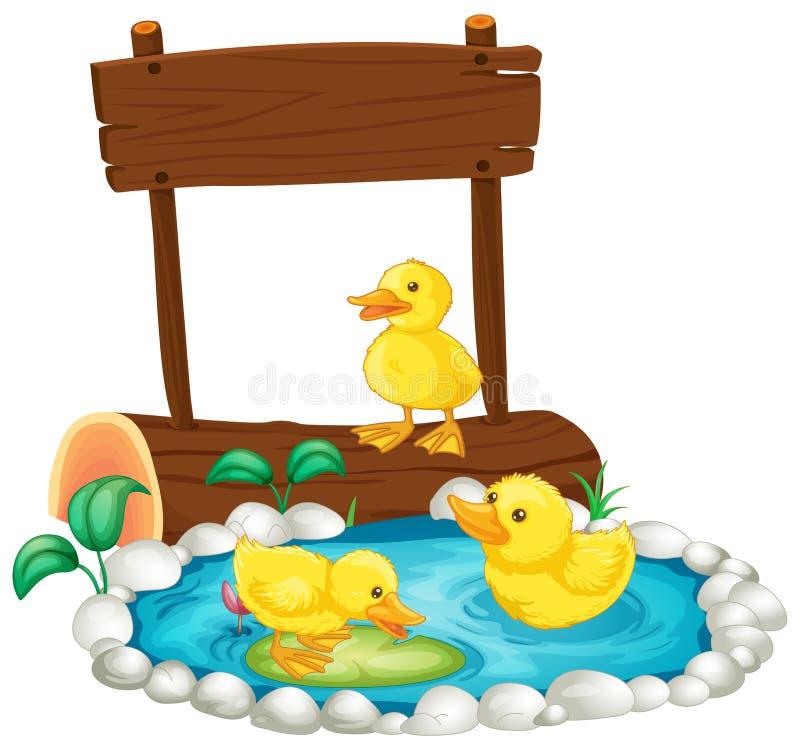 Tre ankungar som simmar i dammet royaltyfri illustrationer