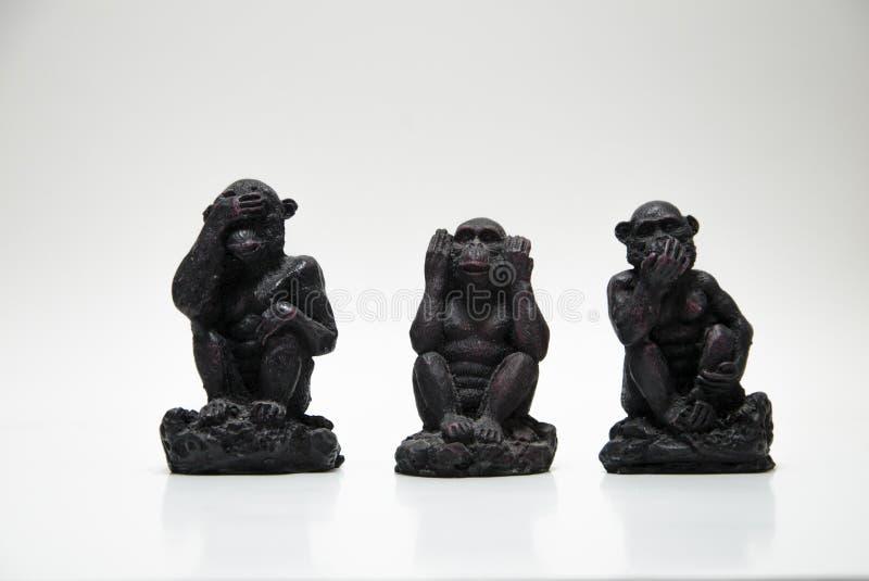 Tre apor fotografering för bildbyråer