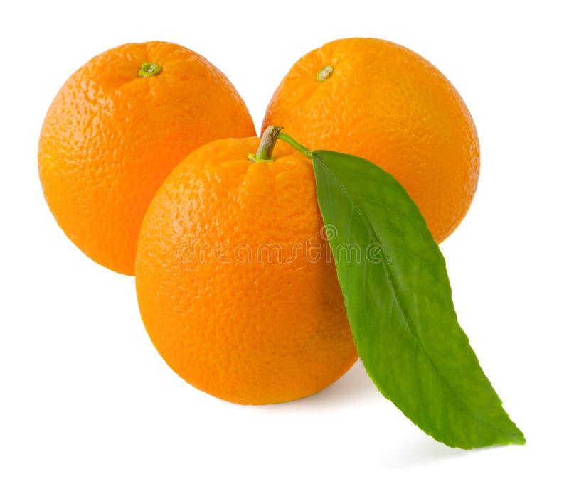 Tre aranci su una priorità bassa bianca immagini stock libere da diritti