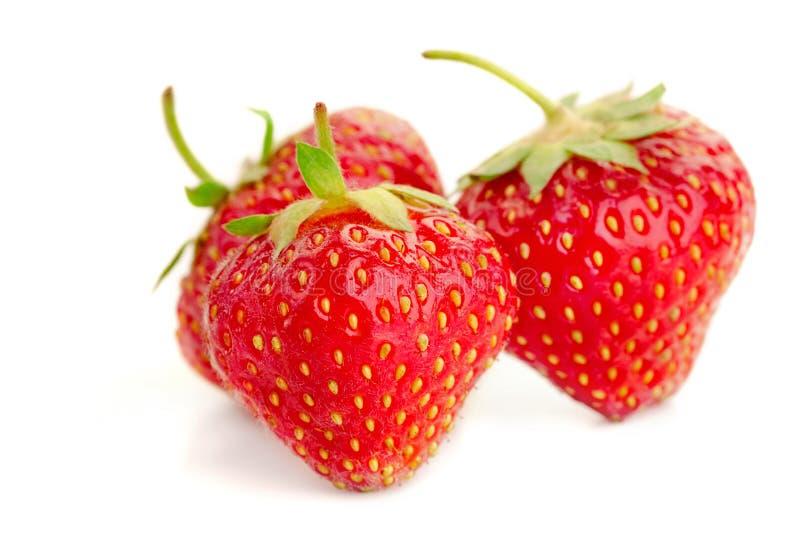 Tre bär av mogna saftiga jordgubbar på den vita tabellen royaltyfri foto
