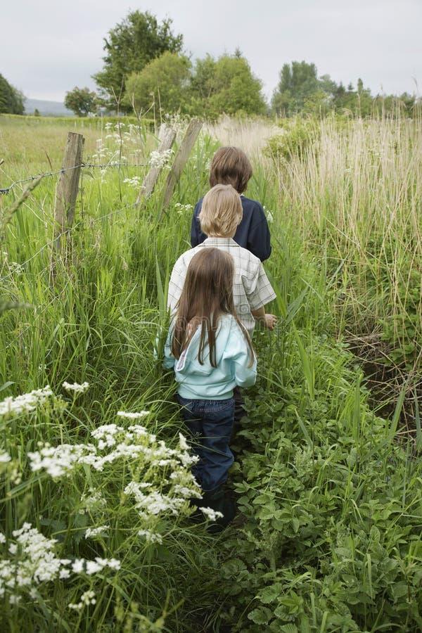 Tre bambini che camminano nella fila lungo le piante fotografie stock