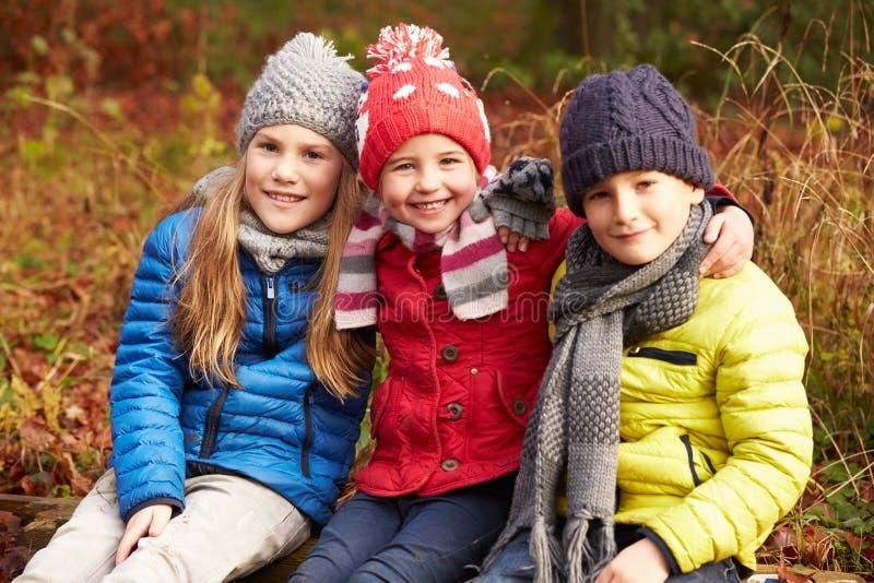 Tre bambini sulla passeggiata attraverso il terreno boscoso di inverno immagini stock
