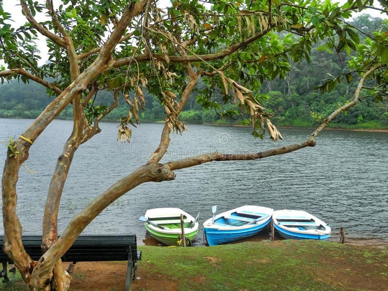 Tre barche vuote nella parte anteriore nel lago Periyar, Kerala, India immagini stock libere da diritti