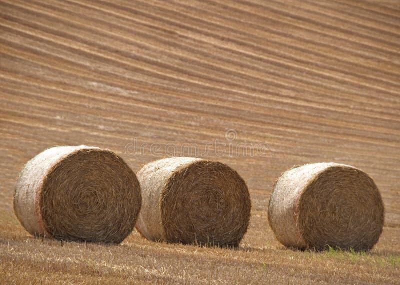 Download Tre barre immagine stock. Immagine di hillside, balla, collina - 200253
