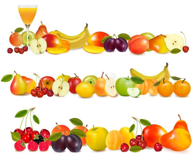 Tre bordi di disegno della frutta isolati su bianco. illustrazione vettoriale